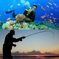 diving and fishing