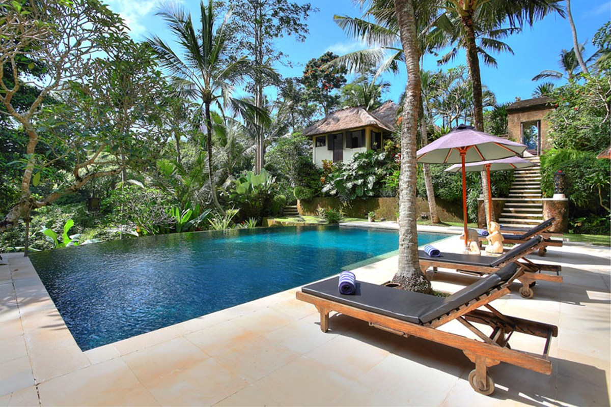 Swimming-pool-with-jungle-backdrop
